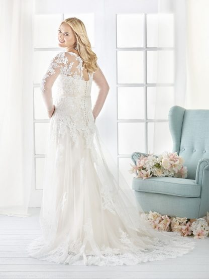 Plus Size Wedding Dress - HBB1805 Back